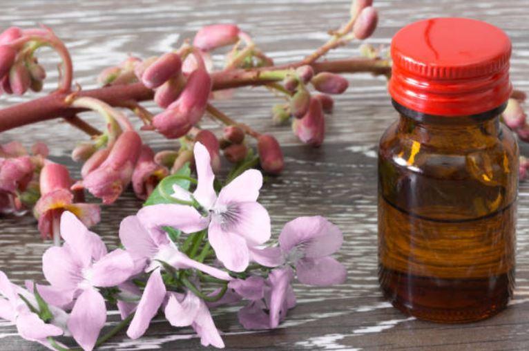 elixirs-fleurs-de-bach